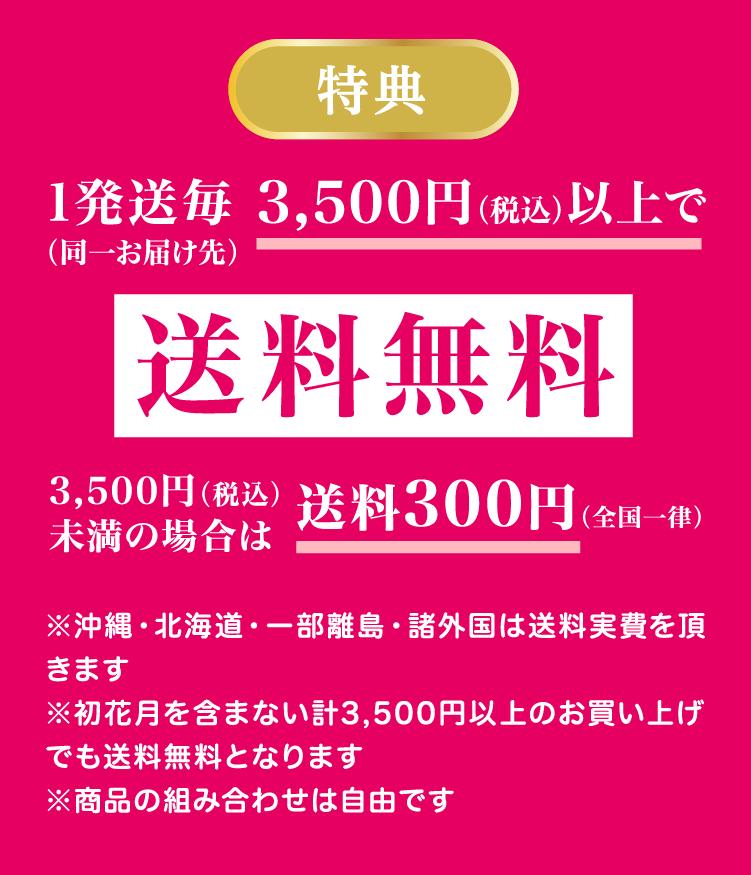 3,500円(税込)以上のご購入で送料無料